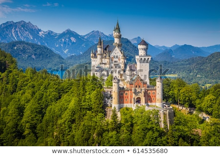 ノイシュヴァンシュタイン城 · アルプス山脈 · ドイツ · 森林 · 山 · 夏 - ストックフォト © kb-photodesign