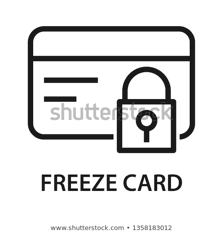 secure payment icon flat design stock photo © wad