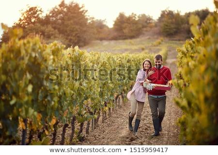 Heureux marche organique jardin homme Photo stock © Jesussanz