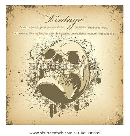 vector skull images stock photo © frescomovie