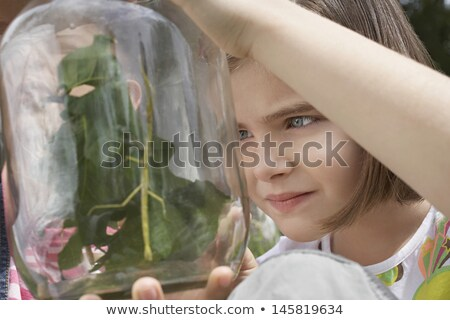Two girls looking at jar with insects Stock photo © IS2