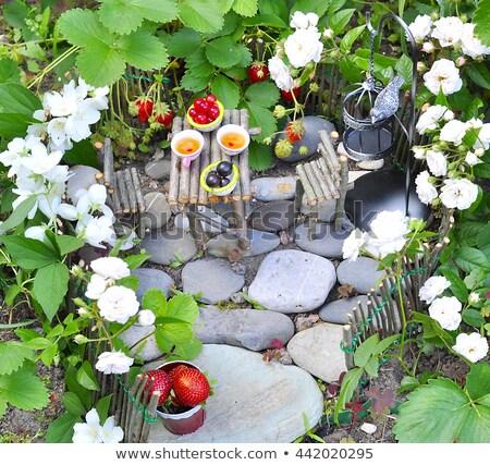 Miniatura jardim fadas casa ilustração Foto stock © lenm