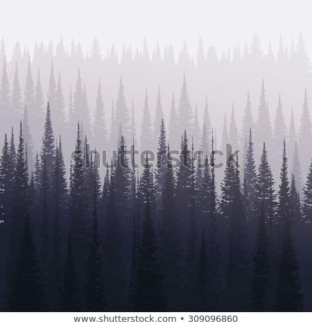 natuur · landschap · silhouetten · bergen · bomen · winter - stockfoto © Leo_Edition