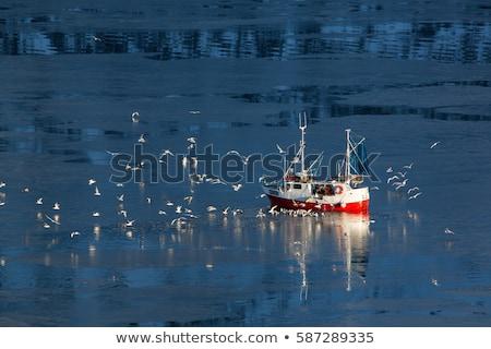 halászhajók · tó · kék · halászat · kínai · fehér - stock fotó © stevanovicigor
