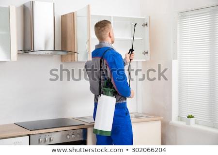 trabajador · plataforma · cocina · casa - foto stock © andreypopov