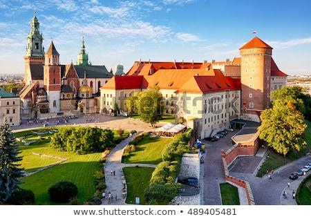собора · Краков · Польша · зеленый · газона · здании - Сток-фото © neirfy