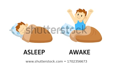 Opposite words for asleep and awake Stock photo © bluering
