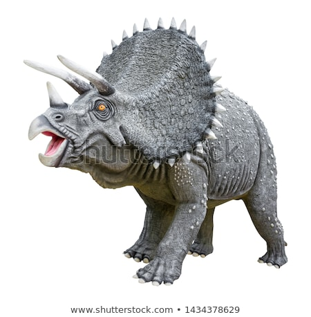 Triceratops dinosaur isolated. Ancient animal. Dino prehistoric  Stock photo © MaryValery