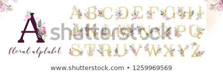 акварель · алфавит · изолированный · бумаги · оранжевый - Сток-фото © natalia_1947
