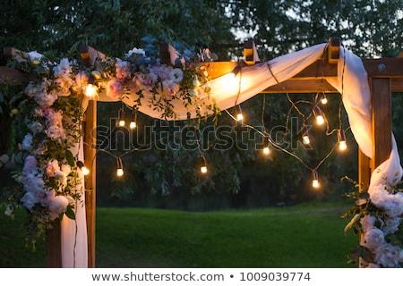 Belo ao ar livre cerimônia de casamento grama espera noiva Foto stock © ruslanshramko