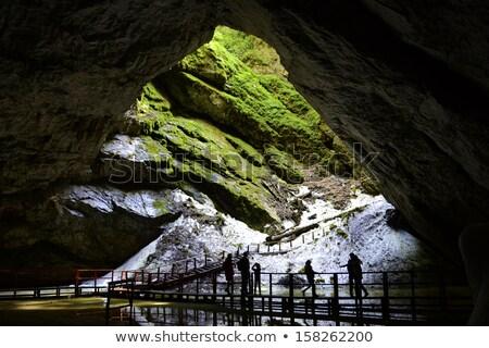 Bejárat barlang hegyek Romania hó zöld Stock fotó © taviphoto