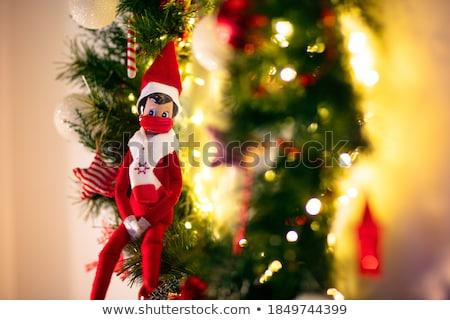 allegro · Natale · piccolo · elf · regalo · presenti - foto d'archivio © ori-artiste
