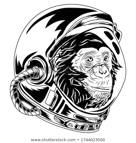 Cartoon Angry Spaceman Chimpanzee Stock photo © cthoman
