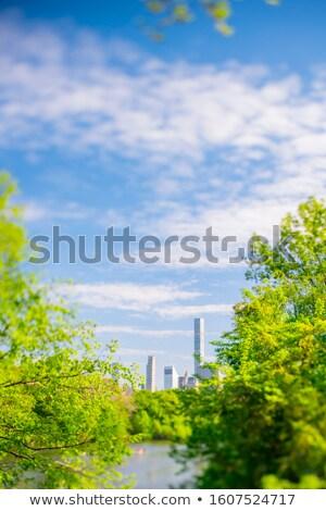 vert · paysage · Rainbow · ciel · nuages · nature - photo stock © colematt