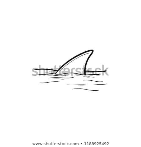 shark fin over water hand drawn outline doodle icon stock photo © rastudio