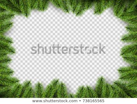 Noel çerçeve çam mutlu tebrik kartı Stok fotoğraf © odina222