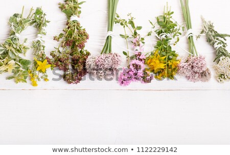 Stock photo: Bottles of homeopathic pills with dried herbs