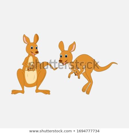 kangaroo on note template stock photo © bluering