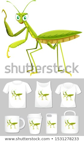 Graphic of grasshopper on different product templates Stock photo © bluering