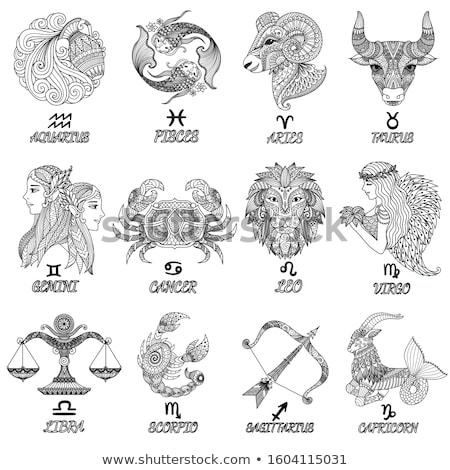 símbolo · zodíaco · assinar · grunge · estilo · preto - foto stock © cidepix