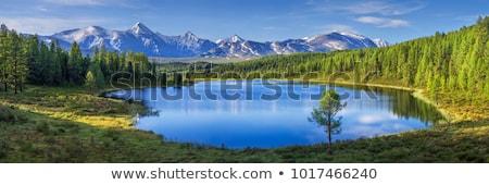 nebuloso · manhã · lago · pequeno · floresta · natureza - foto stock © simplefoto