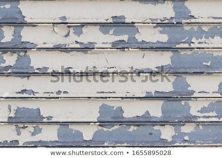 Paint rolling Stock photo © Hofmeester