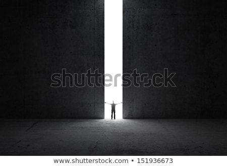 In concrete wall doorway with bright light Stock photo © cherezoff