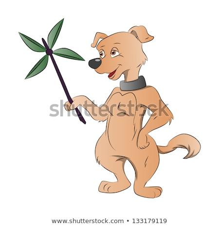 собака бумаги Windmill иллюстрация природы Сток-фото © Morphart