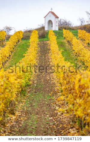landscape with gods torture in southern moravia czech republi stock photo © phbcz
