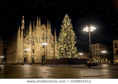 Nacht milaan kathedraal beroemd Stockfoto © vapi