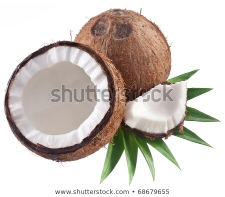 Coco isolated on the white background. High Quality  Stock photo © kayros