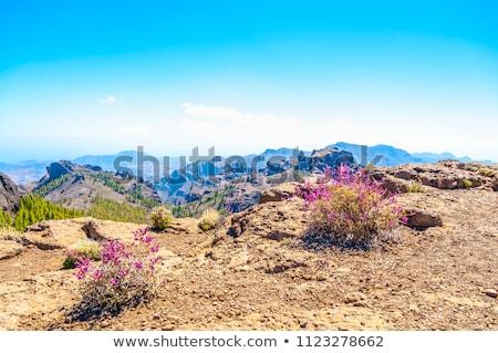 Stock photo: Gran Canaria mountains