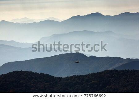Motor small ultralight plane Stock photo © Hofmeester