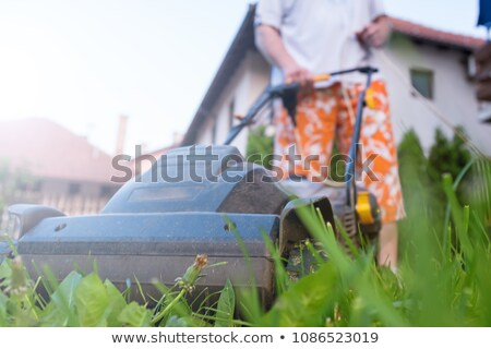 Man with push lawnmower, low angle Stock photo © IS2