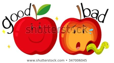 Tegenover woorden goede slechte illustratie voedsel Stockfoto © bluering