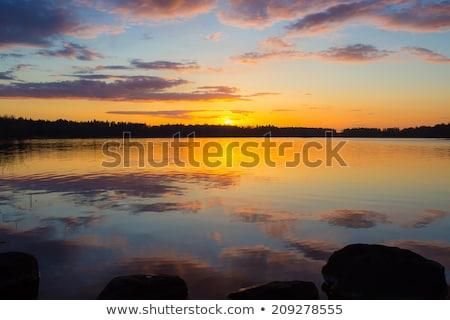 lago · silueta · hermosa · puesta · de · sol · árbol - foto stock © kwest