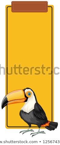 toucan book mark concept stock photo © bluering