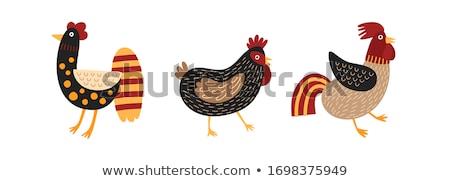Domestic Bird White Hen Crest Illustration Poster Stock photo © robuart