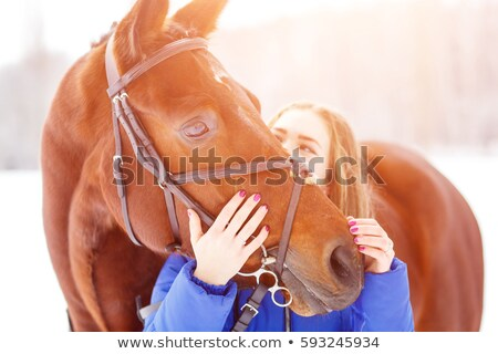 teenager , bridle and her horse Stock photo © cynoclub