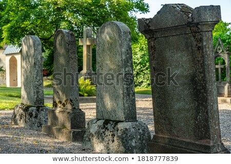 rows with old gravestones stock photo © prill