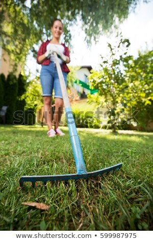 Woman using spade Stock photo © photography33