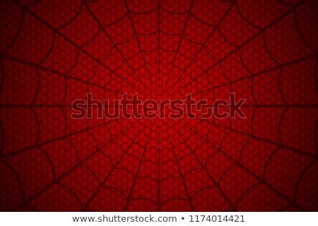красный Spider силуэта ужас изображение Сток-фото © cherju