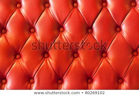 Plusz czerwony skóry obraz antyczne siedziba Zdjęcia stock © sumners