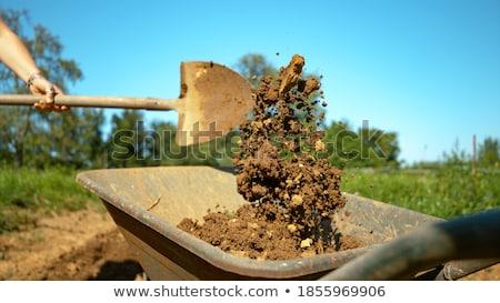 uśmiechnięty · pracownik · budowlany · łopata · szpadel · uśmiecha · strona - zdjęcia stock © photography33