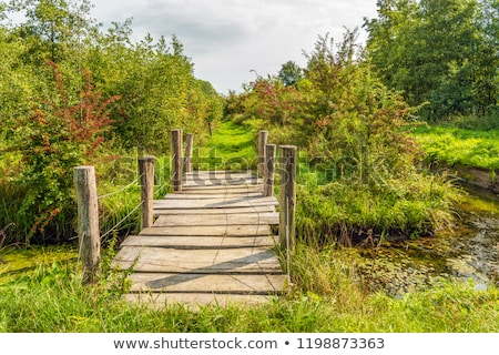 Small Wooden Footbridge Stock photo © cosma