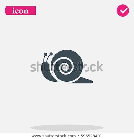 Vector icon snail Stock photo © zzve