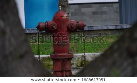 Amerikai városi tűz megelőzés felszerlés víz Stock fotó © lunamarina