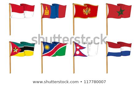 Handdrawn flag of Mongolia Stock photo © claudiodivizia