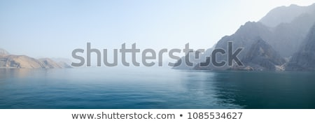 Berg zee zwarte boom schoonheid zomer Stockfoto © mariephoto
