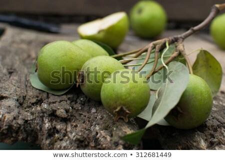 Organique sauvage poire vert alimentaire nature Photo stock © artlens